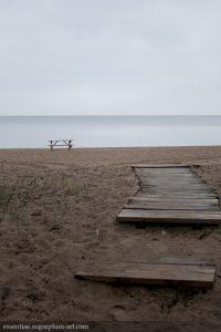 Landscape - 2010