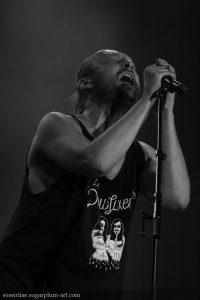 Bernard Adamus - 2017