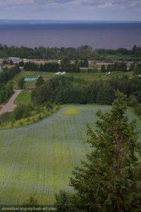 Lac-St-Jean, 2016