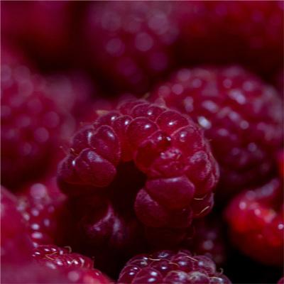 Rouge - Framboises