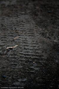 Wheel in mud - 2011