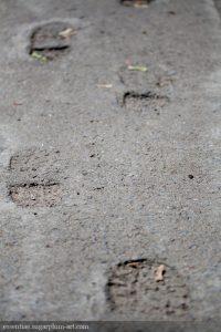 Feet in concrete - 2011