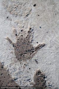 Hand in concrete - 2011
