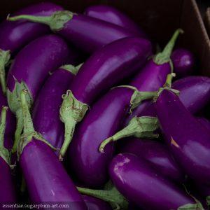 Eggplants - 2014