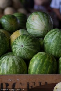 Melons - 2014