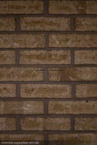 Bricks - 2009