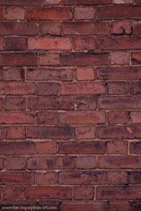 Bricks - 2010