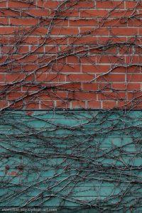 Wall - 2014